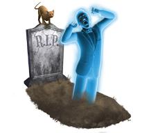 Sims  Pets Gba Dog Walking