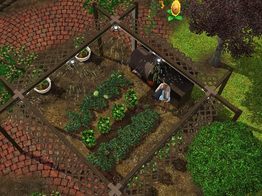 Greenhouse%204.jpg