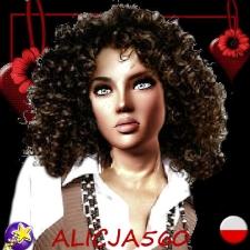 ALICJA560