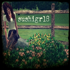 sushigrl8