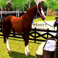 freckledhorse1