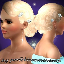 Wedding hair with aquamarin clips by perfektmoments63 - The Exchange