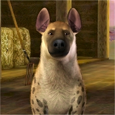 Spotted Hyena By Littlev The Exchange Community The